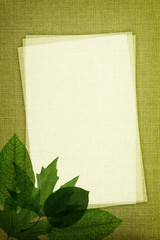 Green leaves on fabric texture with copy space