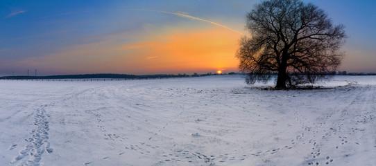 Sonnenaufgang über der Koppel als Panoramafoto