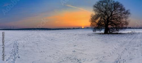 canvas print picture Sonnenaufgang über der Koppel als Panoramafoto