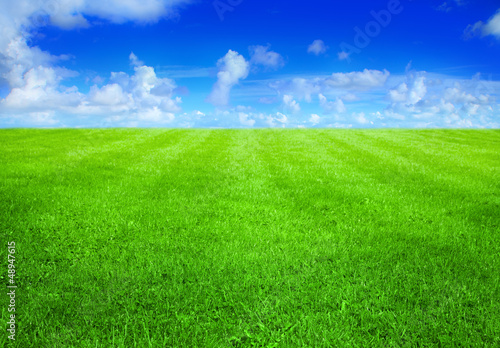 canvas print picture green grass and blue sky
