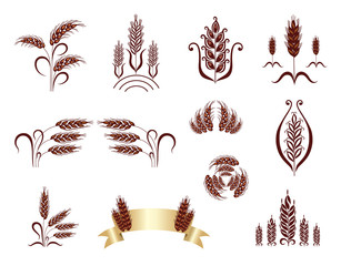 Grain ears. Design elements.