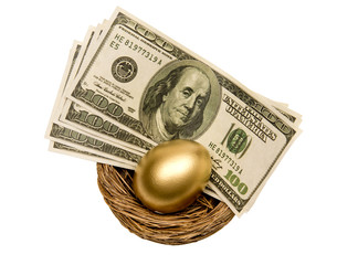 Golden Egg And Money In Nest Isolated On White