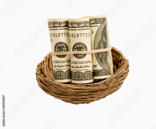 Rolls Of Money In Nest Isolated On White
