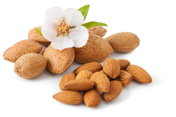 Almond with flower I