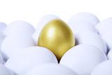 Golden egg horizontal