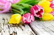 Tulpen auf altem Holz