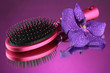 Comb brush and flower, on bright violet background