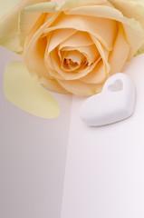 cuore profumato con rosa