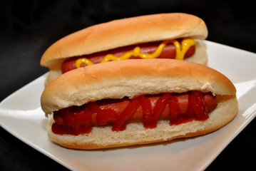 Two Yummy Hotdogs for Lunch