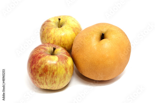 Apple and Chinese Pear