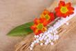 Globuli, Blüten und Rinde - Alternativmedizin