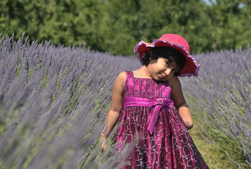 A Little Girl Playing in Lavender Garden