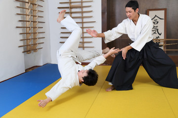Action Aikido.