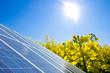 Raps Solar
