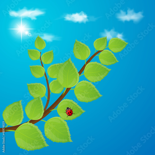 Background with green leaves and sky. Vector illustration.