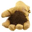 gant de cuir offrant une poignée de terre de jardin