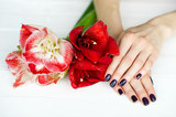 Spa treatment for woman hands with beautiful flowers