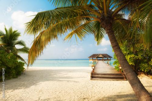 Fototapeten,strand,panorama,urlaub,maldives