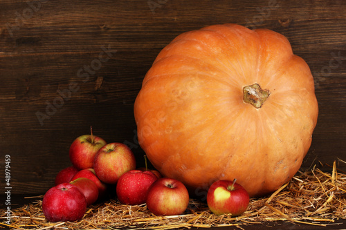 Excellent autumn still life with pumpkin