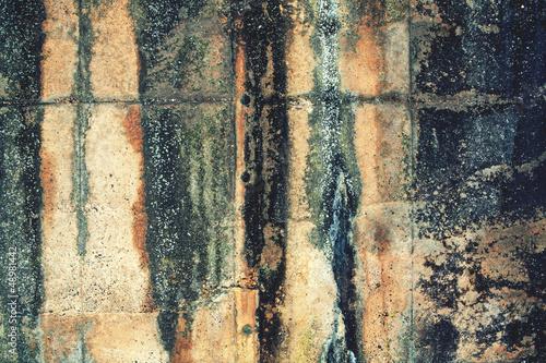 moldy concrete wall