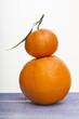 orange et clémentine