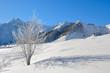 paysage du Massif central en hiver