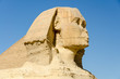Head of the Great Sphinx of Giza in Egypt