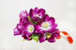 bunch of purple tulips on a white table