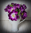 purple tulips - old  style of photography