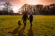 canvas print picture - couple with dog sunset