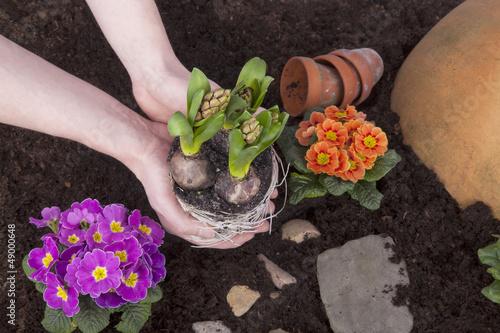 Studioaufnahme- Gartenarbeit - Blumen einpflanzen