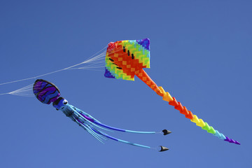 Colorful flying kites against a blue sky, Matariki festival