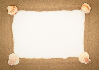 sea shells with sand and white paper as background