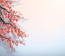 Vecteur de fond dans le style japonais. Branches de cerisier