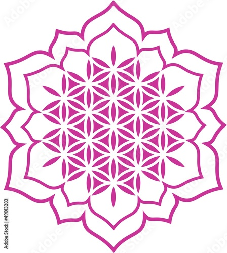 Vektor - Blume des Lebens - Herz Lotus - Chakra