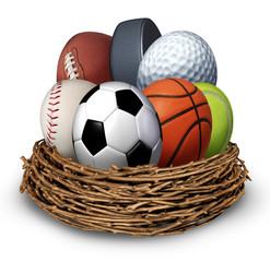 Sports Nest