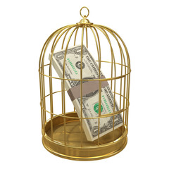 Birdcage with dollars inside