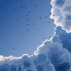 Flock, blue sky and clouds.