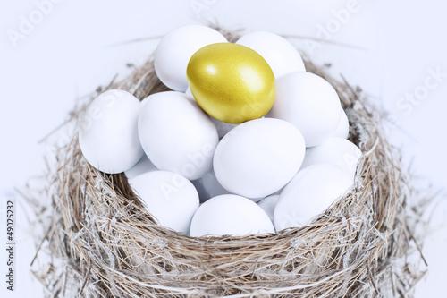 Unique gold egg investment