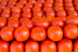 tomatoes vegetables stacked in a row on market