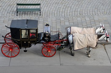 Tourists black and red horse carriage - Vienna Austria