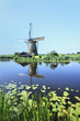Ancient wind mill reflected in a blue canal, Holland.
