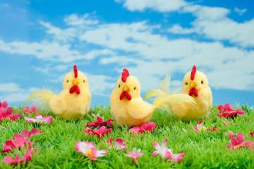 drei gelbe Küken auf grüner Wiese mit Blumen vor blauem Himmel