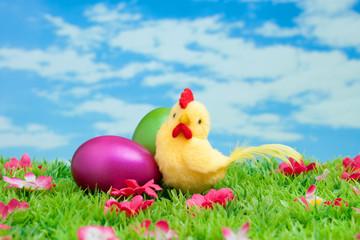 gelbes Küken mit Ostereiern auf Blumenwiese vor blauem Himmel