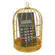 Birdcage with a calculator inside