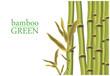 Fototapeten,bambu,grün,gras,bar