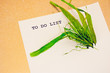 sustainability taking over business to do list