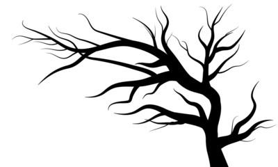 Baum isoliert