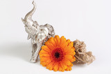 Gerbera daisy with desert rose and small elephant figure.
