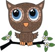 a brown little sweet owl